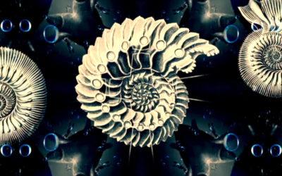 Видео на композицию «Дыхание»